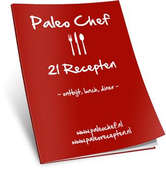 533acccc-paleo-chef-bonus