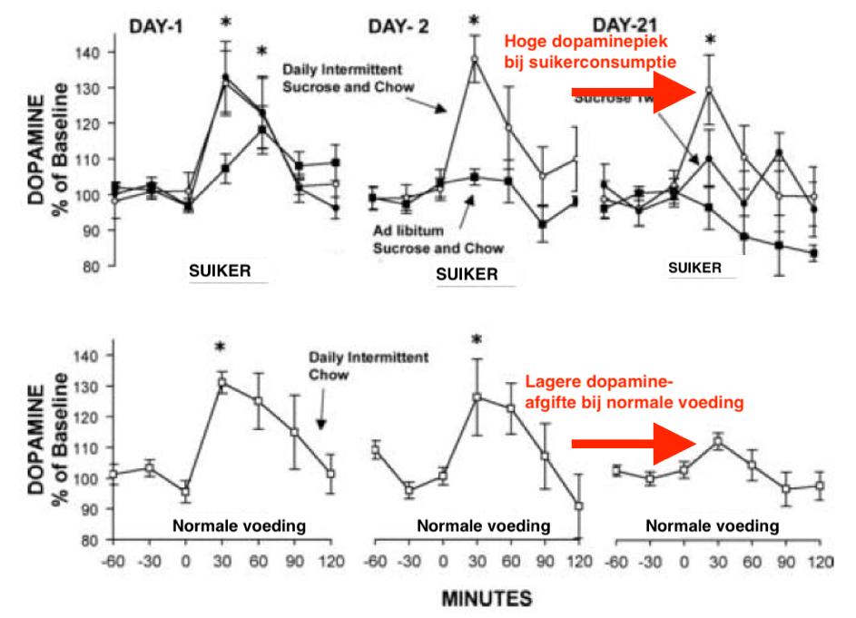 Grafieken tonen mogelijk verband tussen dopamine en suikerverslaving